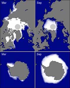 niveles de hielo marino en los polos