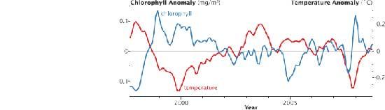 relación temperatura-clorofila en los océanos