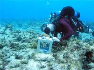 hábitat sumergible sharq, colocando monitores