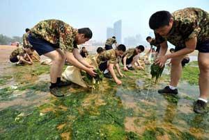 soldados chinos recojen algas verdes