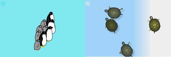 widgets de pingüinos y tortugas