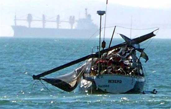 Yate destrozado por ballena