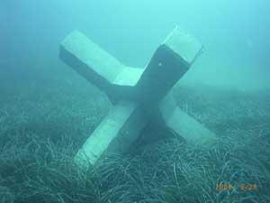 arrecife artificial sumergido