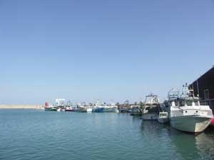 Benicarló puerto pesquero