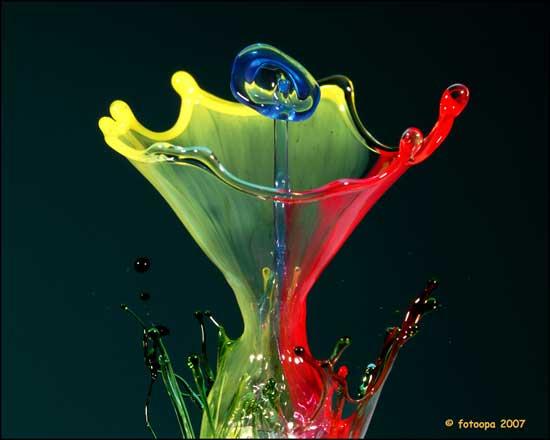 copa flor