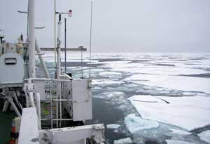 ESAS, zona de los trabajos en el Ártico