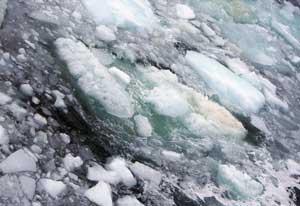 ESAS, superficie helada del mar