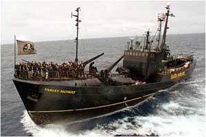 Farley Moway, Sea Shepherd