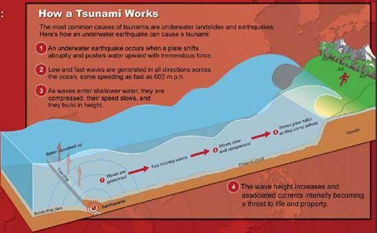 gráfico como se desarrolla un tsunami