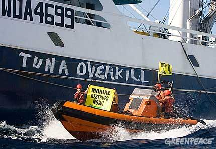 Greenpeace activistas para salvar al atún
