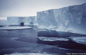 iceberg en el glaciar Mertz, Antártida