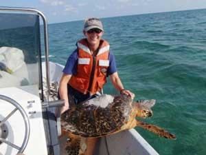 Kristen Hart, investigadora tortugas marinas