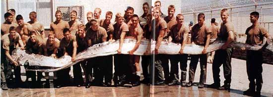 oarfish (pez remo)