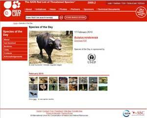 Página web especie del día IUCN