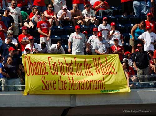 pancarta Greenpeace moratoria ballenas béisbol Obama