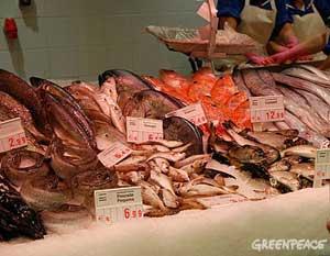 pescaderia, venta de distintas especies