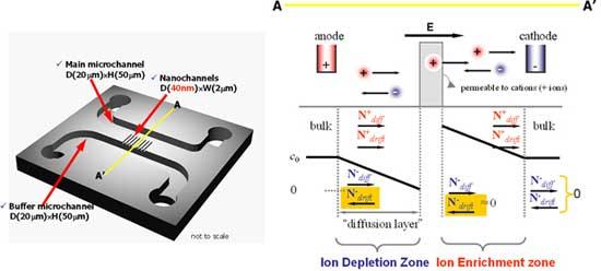 polarización por concentración de iones