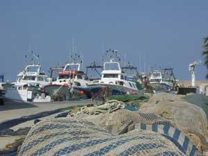 puerto Benicarló, pesqueros