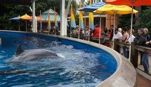 Seaworld-park, Orlando