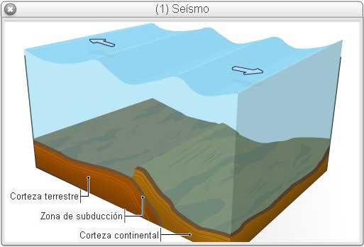 seismo submarino