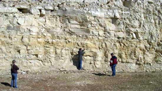 sitio excavación fósil de tiburón gigante