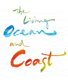 the living ocean, Expo 2012 Yeosu