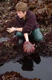 Jane Lubchenko, bióloga marina