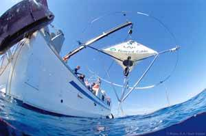 lab, experimento en el mar
