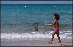 niño captura una medusa