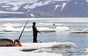 Inuit espera para la caza del Narval