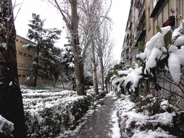 Nevada en Madrid, enero 2009