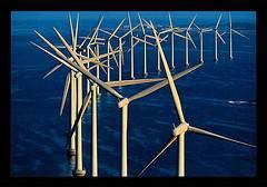 parques eólico marino