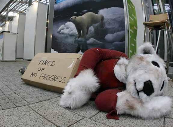 disfraz de Oso polar de peluche en Poznan
