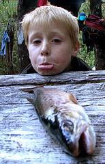 el pescado no gusta a los niños