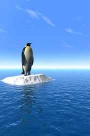 pingüino en un solitario pedazo de hielo