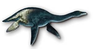 figuración de plesiosaurio