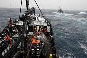 El Steve Irwin encuentra al Nisshin Maru