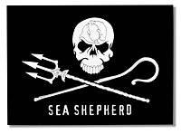 bandera pirata sea shepherd