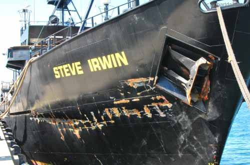 el Steve Irwin en el puerto de Hobart, Australia