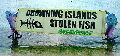 Stolen fish, Greenpeace