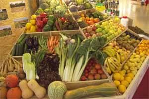 verduras en biocultura 2008