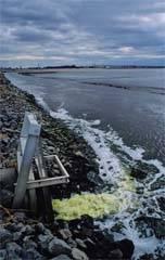 vertidos contaminantes al mar