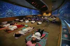 Sesión de yoga, Mar vivo, océanos Valencia