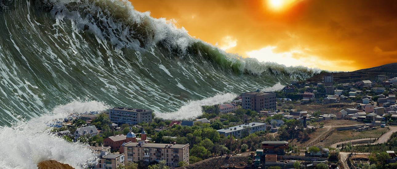 ANTOLOGÍA--CADÁVER EN PROSA. Tsunami-ciudad