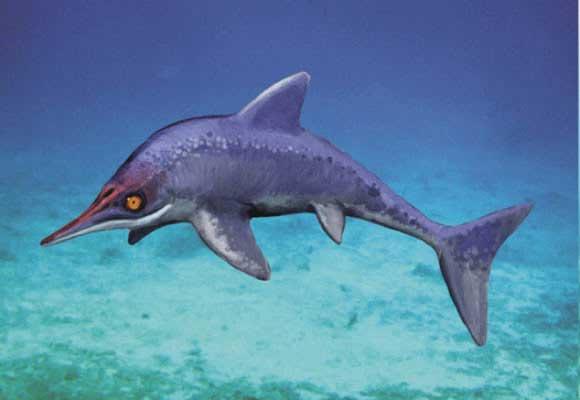 Fósil de i... Ictiosaurio