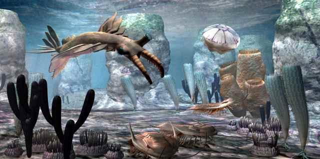 'Big Bang' de especies puede explicarse por desplazamiento continental