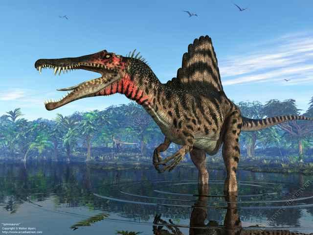 El único dinosaurio semiacuático conocido, ahora en exhibición