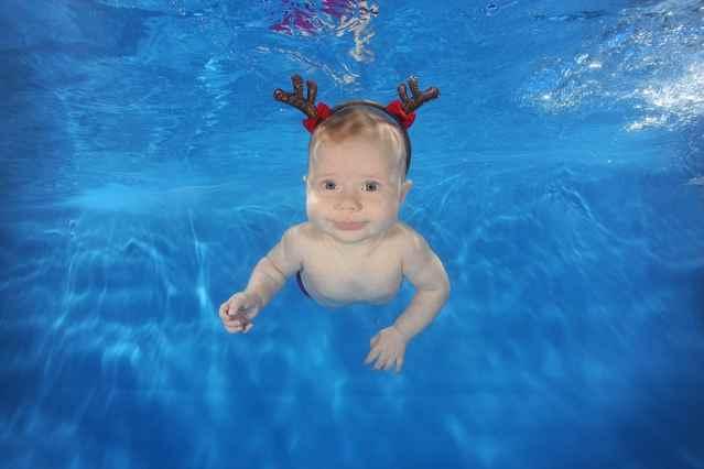 Adorables bebés de Navidad en la piscina