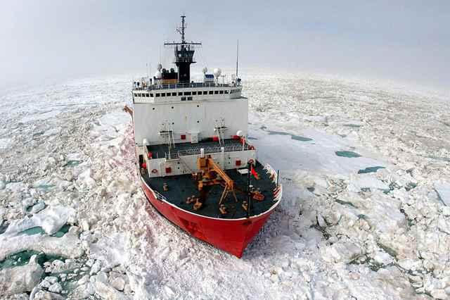 Antigua criatura descubierta en las profundidades del Océano Ártico
