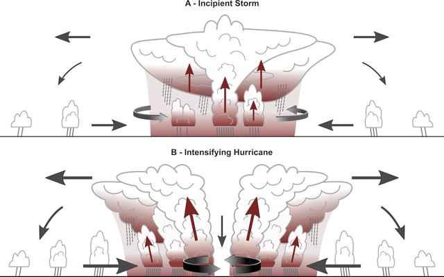 captura de radiación por las nubes